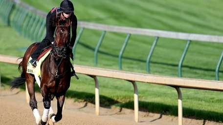 Orb practices before the 2013 Kentucky Derby.
