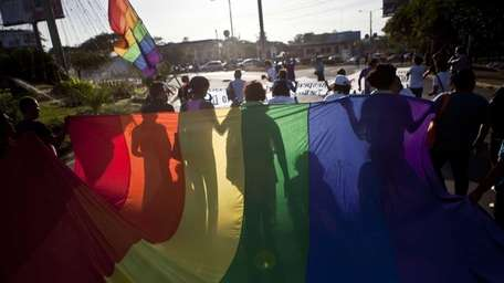 Members of the lesbian, gay, bisexual and transgender