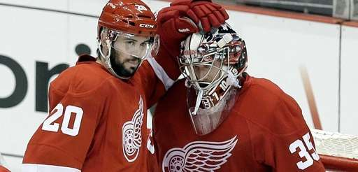 Detroit Red Wings left wing Drew Miller (20)