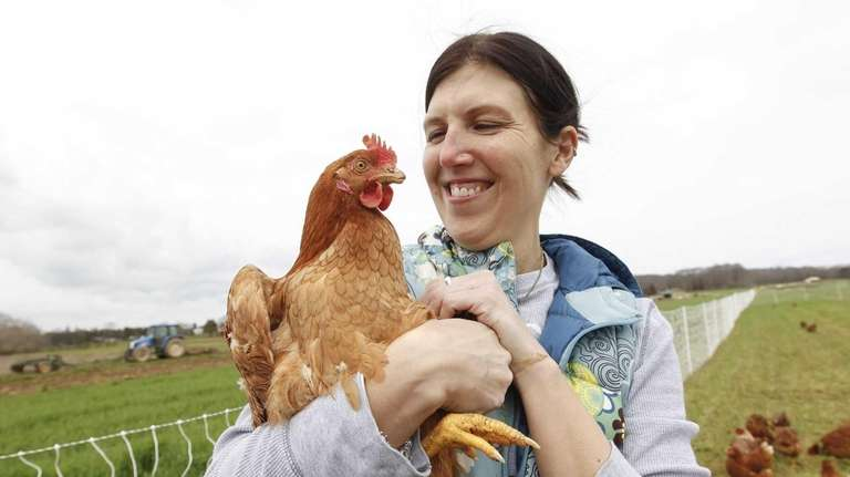 Long Islanders raise chickens in their backyards | Newsday