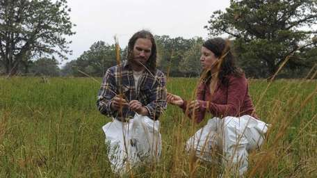 Chris McHugh and Polly Weigand, looking over grass