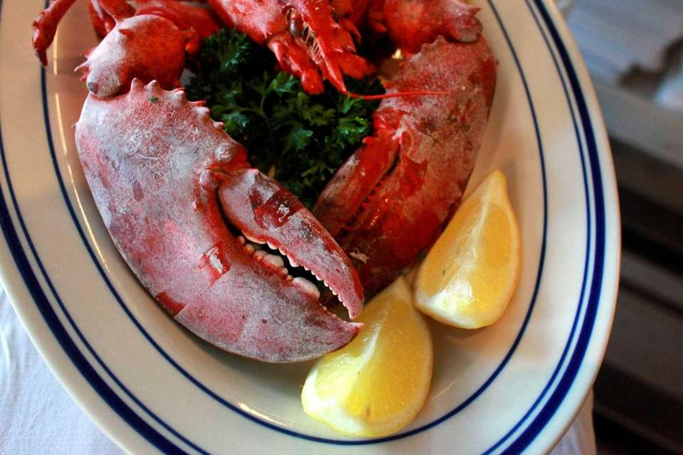 Steamed lobster is just one of many seafood