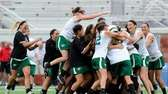 Farmingdale players charge the field following their 8-5