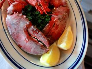Steamed lobster is one of the many seafood