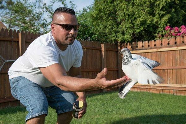 Pigeon fancier Ivan Torres, 44, of Farmingdale, hand-feeds