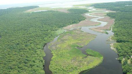 An undated aerial shot of Wertheim National Wildlife