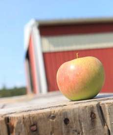 The Farm Cidery bill would aid New York