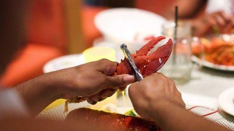 A diner eating lobster at Four Food Studio