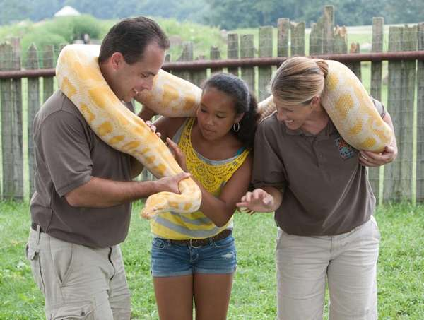 An albino Burmese python at Safari Off Road