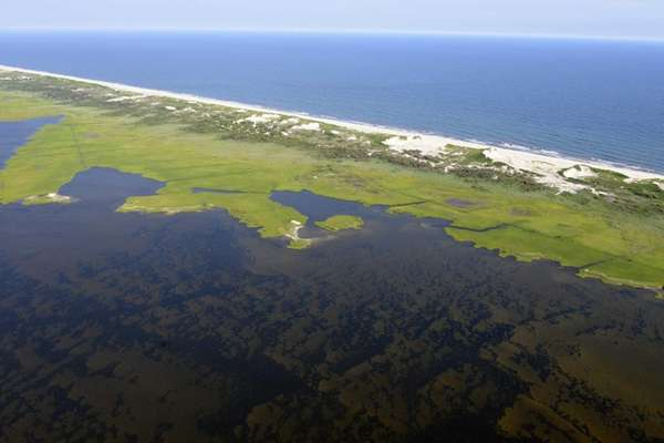 Brown tide is spreading across Great South Bay,