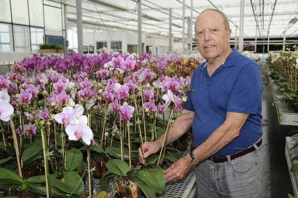 I. William Bianchi runs an orchid business on