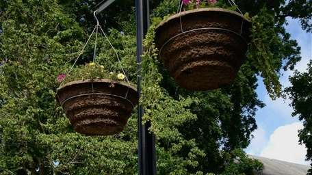 River and Roots Community Garden co-founder Amy Davidson,