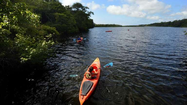 Kayakers on the Carmans River paddle their way