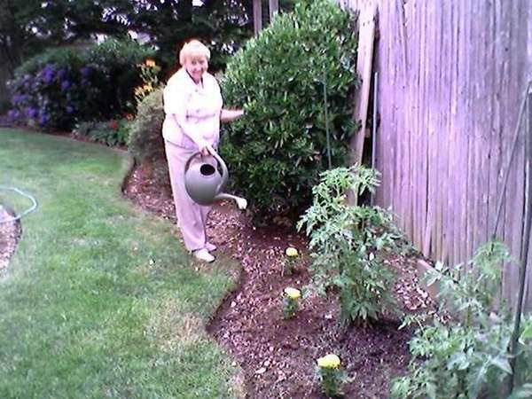 Theresa Lawrence of Farmingdale started tomato seeds on