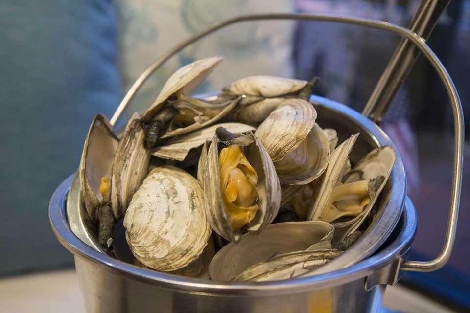 A bucket of plump and briny local steamers
