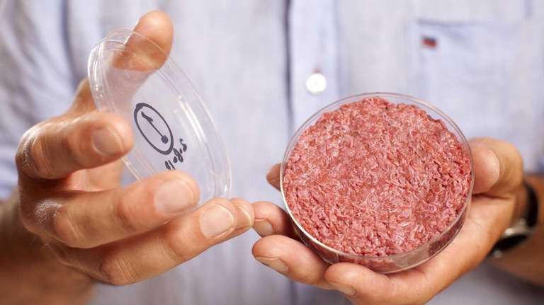 A burger made from cultured beef is shown