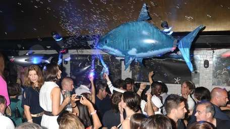 Sharks abound at Sienna Ultralounge in East Hampton