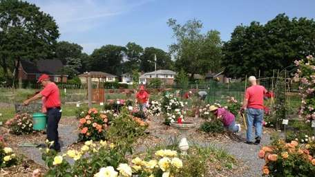 Master gardeners busy planting at the Cornell Cooperative