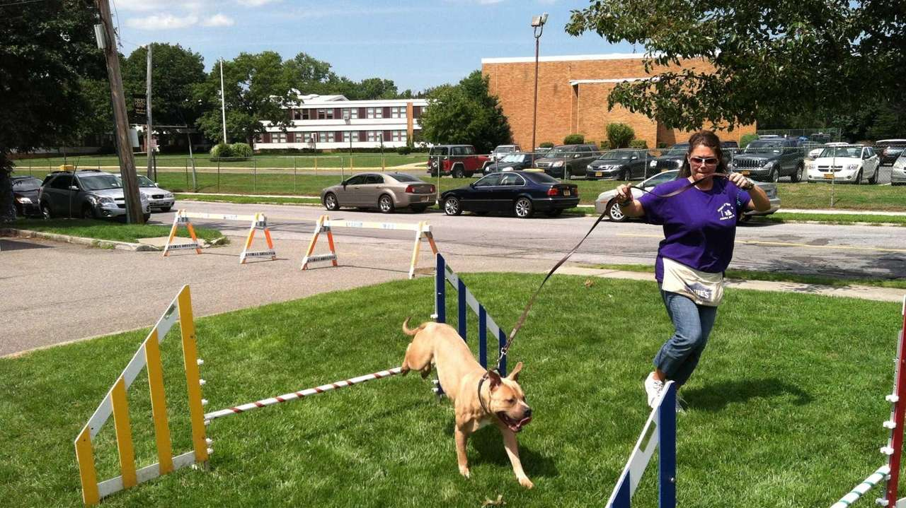 Summer Of Love Adoption Program Celebrated At Inaugural Woofstock And Newpurrt Festival Newsday