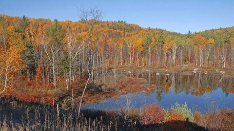 Autumn foliage in the Adirondacks near Lake Placid.