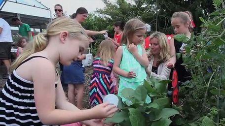 At Bayport Flower House's ladybug release, children were