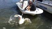 Suffolk County Police Marine Bureau officers rescue an