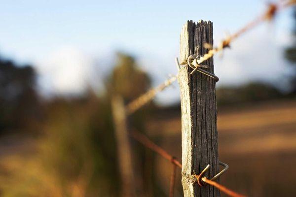 Fence on a farm.