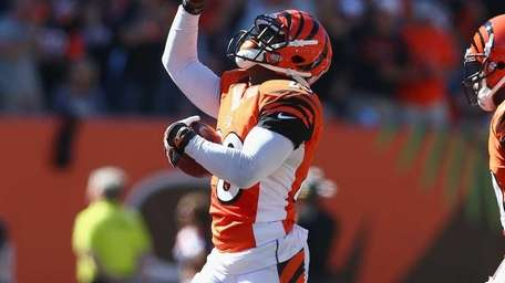 Terence Newman of the Cincinnati Bengals celebrates after