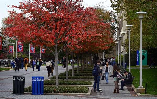 The campus of Stony Brook University University.