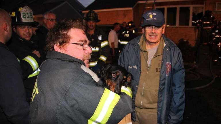 Firefighters retrieved and revived a family's dachshund from