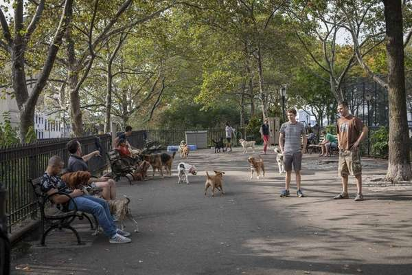 DeWitt Clinton Park in Hell's Kitchen features a