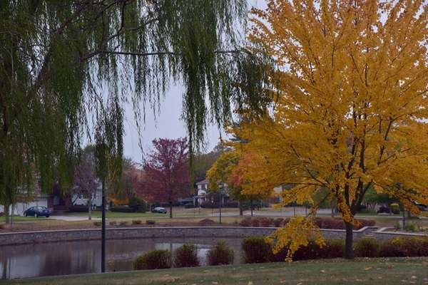 Searingtown Pond Park is the focal point for