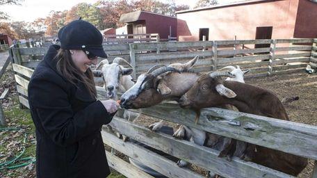 Cindy Aronstam, a volunteer from Pet Peeves, visits
