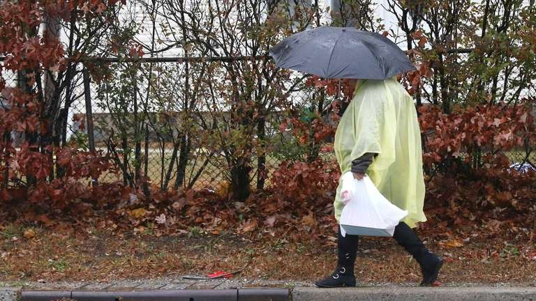 A woman walks under an umbrella in the