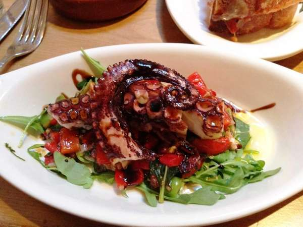 A lunch special of octopus salad with roasted
