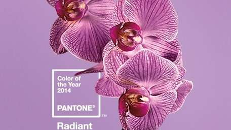 Pantone named Radiant Orchid the color of 2014.