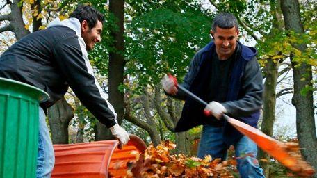Landscaper: Do you enjoy frolicking in your backyard,