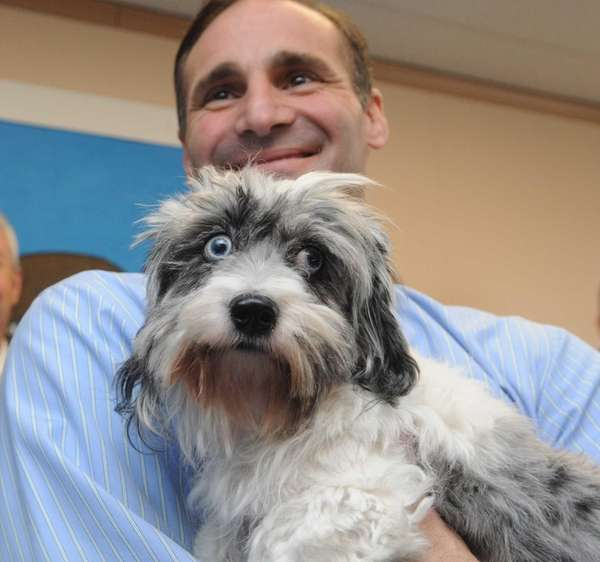 Islip town councilman Steve Senft, holds Miracle, during