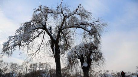 A winter sky. (Jan. 6, 2014)