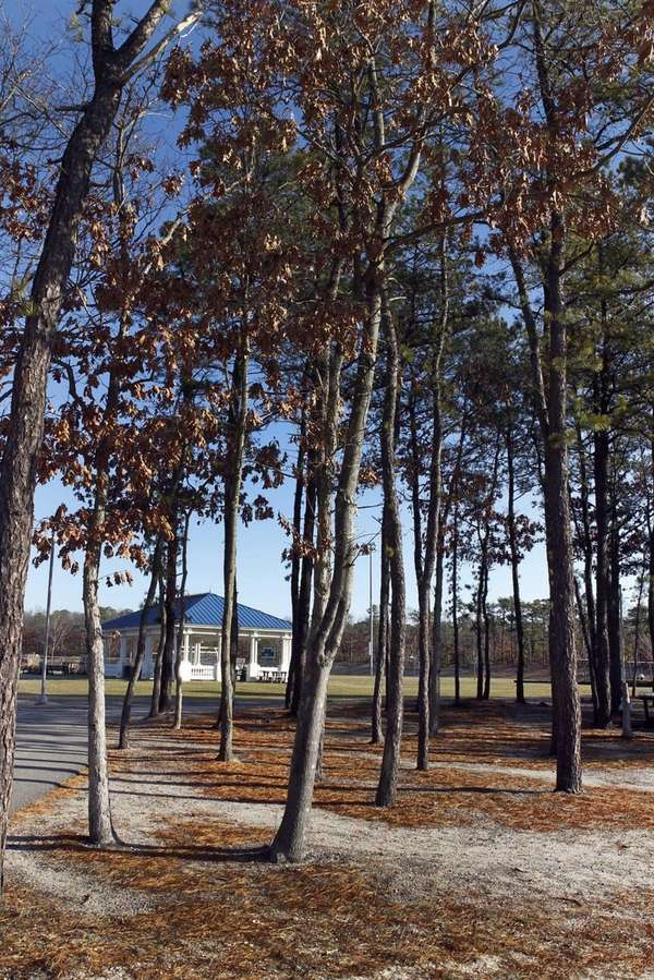 Brookhaven Town's Diamond in the Pines Park on