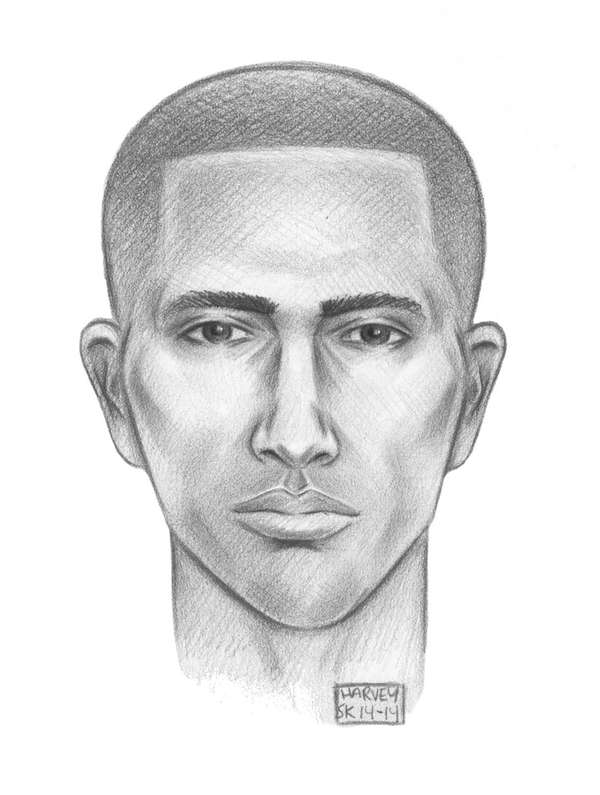 Police have released a sketch of the suspect