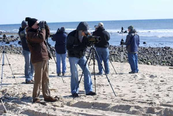 Members of the Eastern Long Island Audubon Society
