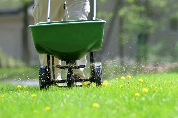 Researchers studying the correlation between pesticide use and