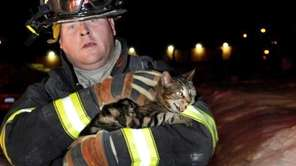 A Westbury firefighter carries a cat that was