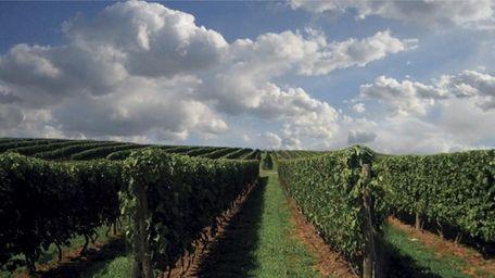 Wölffer Estate Vineyard, 139 Sagg Rd., Sagaponack, 631-537-5106,