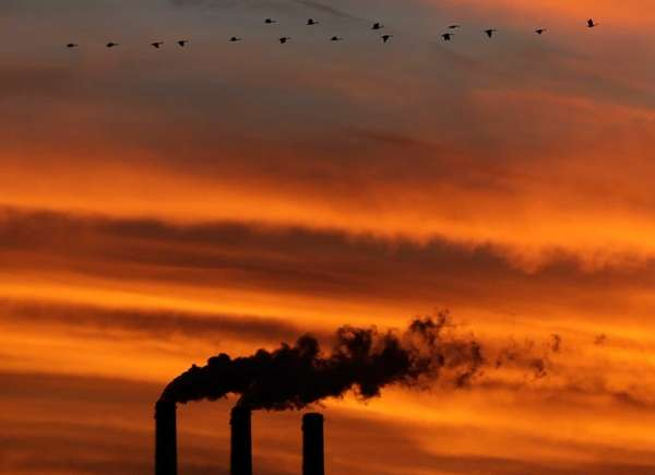 A flock of Geese fly past the smokestacks