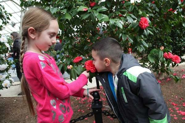 Gabriella Giugliano, 7, of Massapequa, left, and Daniel