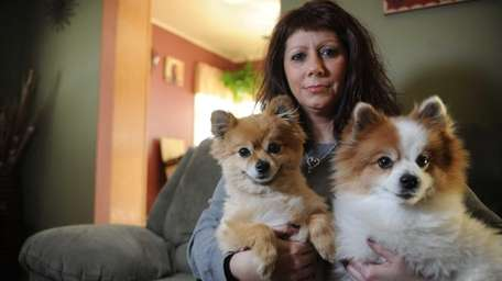 Portrait of Laura Hughes with her two Pomeranians