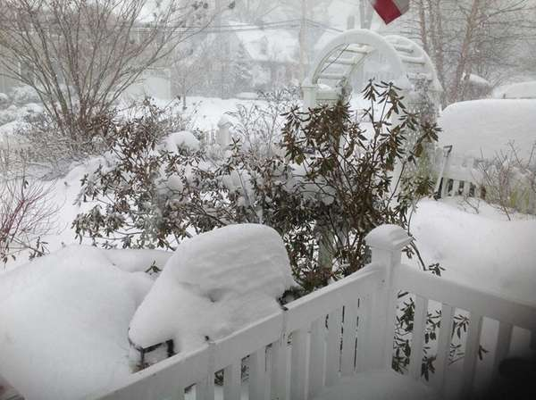 Snow piled up in Jessica Damiano's garden in