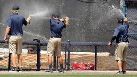 Members of the field crew spray a swarm